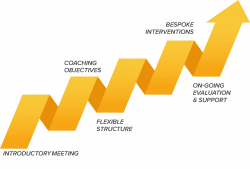 How Executive Coaching Works