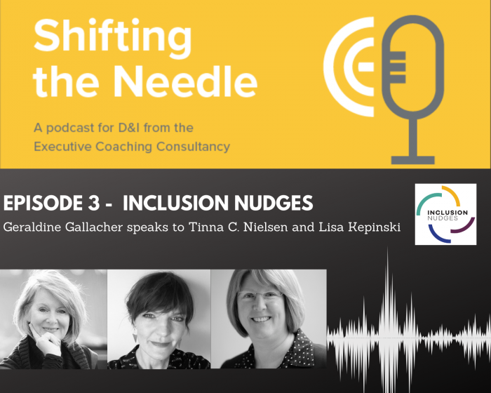 Episode 3 - Shifting the Needle Podcast- Inclusion Nudges